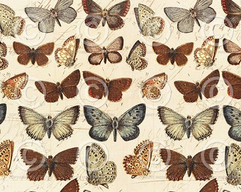 Printable Wrapping Paper Vintage Butterflies Collage Sheet  as an instant Digital Download File