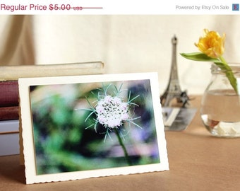 ON SALE birthday card handmade greeting card floral greeting card get well card flower photography blank notecard greeting photo greeting ca