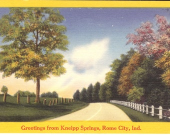 Vintage Linen Postcard...Greetings from Kneipp Springs, Rome CIty, Ind......Used..no. 2222