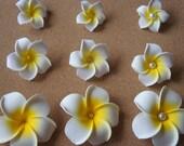 On Sale Doesnt last long! With Pearls! White Hawaiian Plumeria Frangipani Flower Hair Clip, Tropical Wedding, Beach, Bridal Hair clip