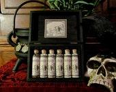 2nd Witches Resin Box Set~ jars, spells, Spell kit, mini apothecary, kit, mini box, Black Mayan, White Pine, Sal Tree, Blanco, Opopanax