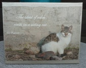 SALE!!!!!! 8x10 Canvas Photograph Cat Quote Print