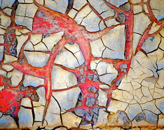 Cracked Paint #2, Abstract, Unique Fine Art, Photography, 11x14 Print, Athens GA, Gift, Home Decor