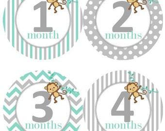 Baby Monthly Milestone Growth Stickers Aqua Grey Monkey Jungle Nursery Theme MS517 Baby Shower Gift Baby Photo Prop