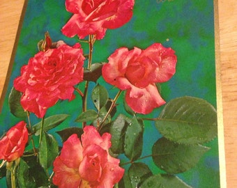 Get Well Card - Roses