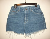 Vintage 1990s High Waisted Denim Shorts, Size Medium / Large