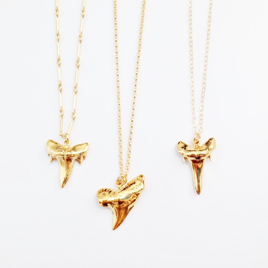 gold shark tooth necklace real shark tooth