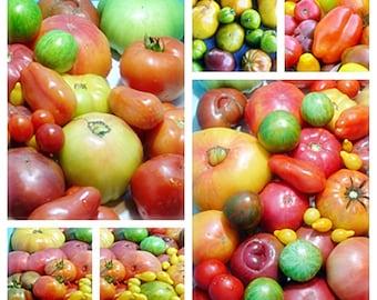 Heirloom Tomato Super Surprise Mix Non GMO Naturally Grown Open Pollinated