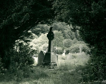 Green Cross at Glendalough Monastery - County Wicklow Gravestone, Ireland Photography- Home Decor