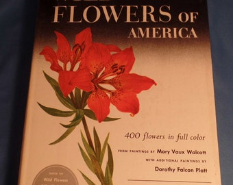 Wild Flowers of America by H. W. Rickett