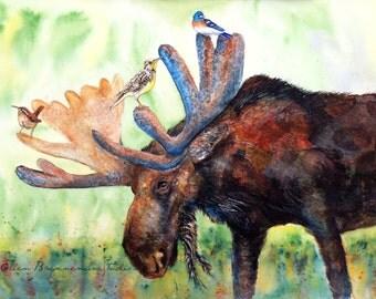 Moose art print - Montana art, moose wall decor, moose of Montana art, Montana bird art, moose wall art, moose lover gift