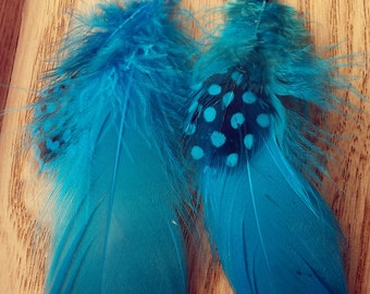 Spotted Turquoise Feather Earrings