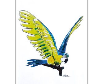 Catchii illustration, with originally hand-painted illustration of parrot yellow