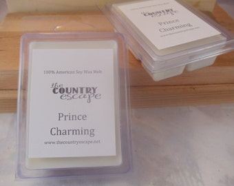 Prince Charming Scented 100% Soy Wax Melt - A Prince of a Scent - Maximum Scented