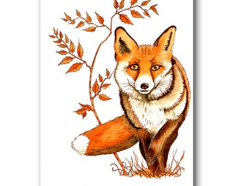 Postcard of red fox in  watercolour and ink