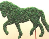 Dressage Horse Topiary Silhouette