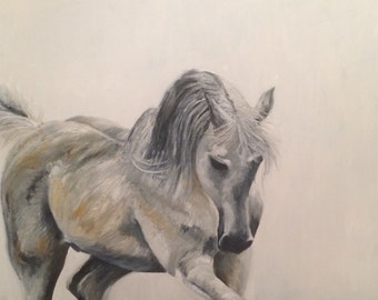 White Arab stallion painted with oils on canvas titled 'White Knight'