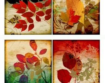 Coaster Set of 4 Autumn 1