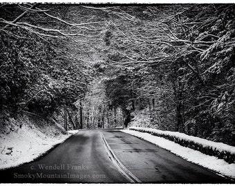Road Through Dark Snowy Forest E93