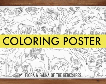 Flora and Fauna of the Berkshires Coloring Poster