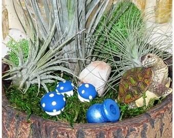 Miniature Woodland Garden Air Plant Trio Turtle Mushrooms Indoor Houseplant ~ Rustic ~ Birthday Gift ~ Thank You Gift ~ Housewarming Gift