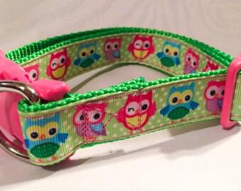 Owl leash and Collar Set