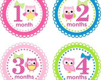 ON SALE Monthly Baby Milestone Stickers Baby Girl Baby Shower Gift One-Piece Baby Stickers Monthly Baby Stickers Baby Month Sticker Hoot Owl