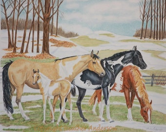 """8x10 giclee print, """"Patches of Spring"""",   3 Paint horses and foal, hand drawn, horse art, Heather Anderson"""