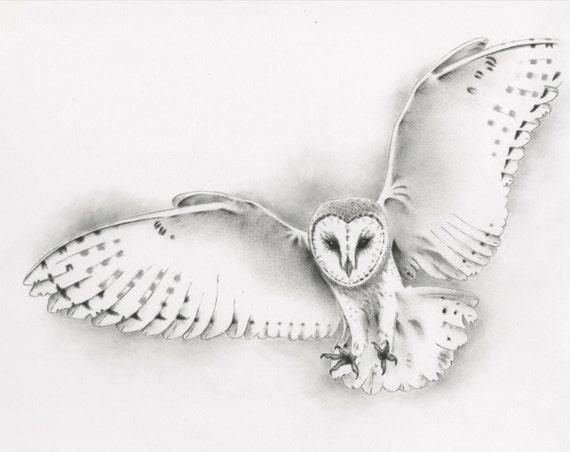 Original pencil flying barn owl drawing owl art barn owl - Dessin de chouette facile ...