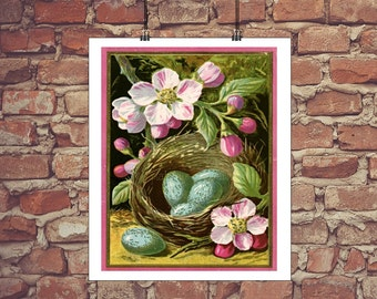 Vintage bird nest - INSTANT art printable - with robin eggs and pink flowers - 8x10
