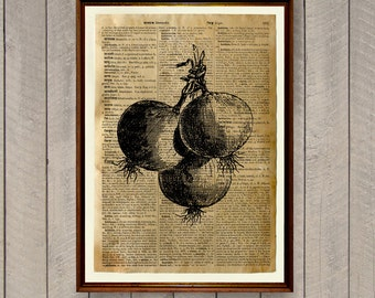 Dictionary page Onion print Vegetables decor Kitchen poster WA521