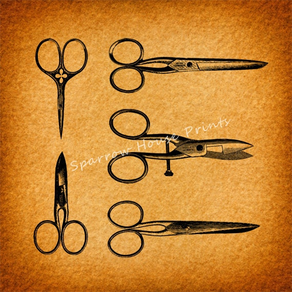 Antique Hair Cutting Scissors and Shears Vintage Art Salon