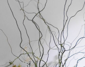 25 3 Ft Curly Willow Branches Home Decor Wedding Supplies Decorations Outdoor Weddings