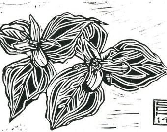 Trillium (Trillium ovatum) - Linoleum Block Print - 7x5