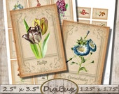 Printable Floral Labels, Digital Collage Sheet, 2.5 x 3.5 inch Cards, Floral Aceo Cards, Vintage Flower Gift Tags, Instant Download