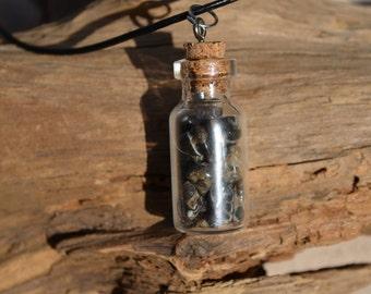 Turritella Stones in a Glass Vial Necklace