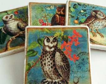 Owl Coasters - Wise Owls - Natural Stone - Any Occasion Gift - Home Decor - Room Accent - Set of 4