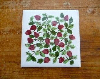 Unique Strawberry Vines Related Items Etsy