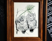 """Signed Owl Print Framed in Wood / Vintage Wall Art / Sleepy Owls on a Pine Bough by """"Salty"""""""