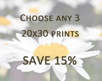 DISCOUNT PRINT SET - Any 3 20x30 Prints - Save 15%