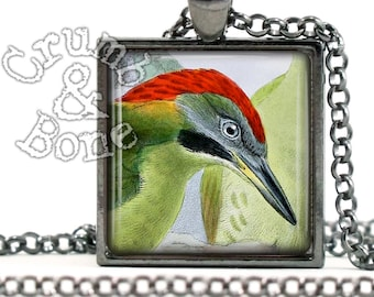 Green Woodpecker, Bird Necklace, Picus Viridis, Pendant Necklace Picidae, Bird Jewelry, Handmade Nature Jewelry, Bird Lover Gifts