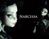 OOAK Monster High Repaint Art Doll - Narcissa