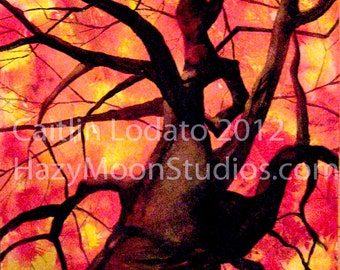 Looking up at an Autumn Tree Watercolor Painting Print