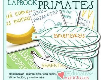 Lapbook sobre los primates -español-