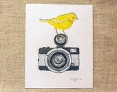 Nursery Art Print, Bird Art, Canary art, Vintage Camera art, Watercolor Painting, Pencil drawing, mixed media 8x10 print