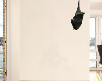 "Sleepy Malayan Flying Fox Fruit Bat Vinyl Decal - 11"" x 27"""