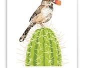 "Cactus and Wren 8"" x 10"" Art Reproduction"