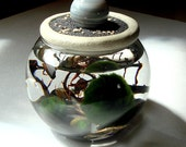 Mini Terrarium Marino Moss Ball. Agate/Jasper Planet Sphere. Stone Top. Unique. Mini Aquarium