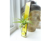 Stained Glass Air Plant Holder - Mellow Yellow
