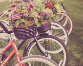 Vintage Bicycle Photograph - Flowers in Bike Baskets - Floral Home Decor Photo Print